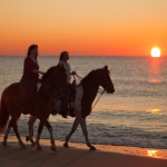 Horse Rides On Noordhoek Beach