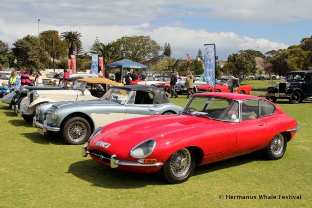 Whales 'n Wheels Classic Car Show Hermanus