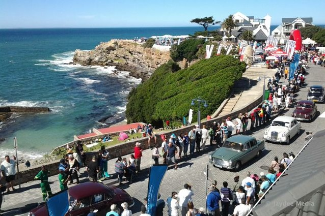 Whale watching festival